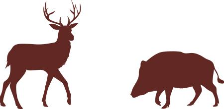 鹿肉と猪肉